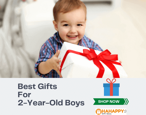 12 Best Gifts For A 2-Year-Old Boy