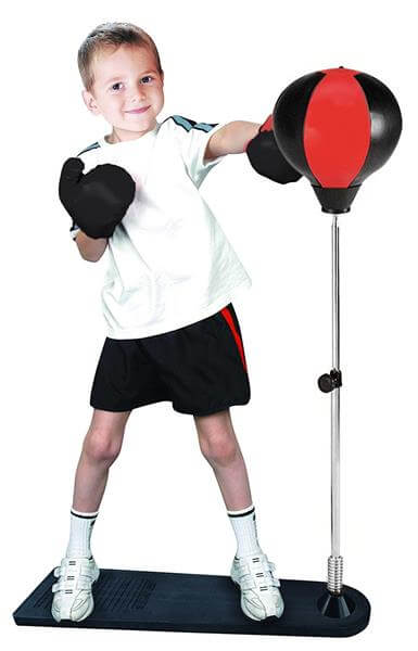 Punching Ball with Stand and Gloves