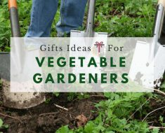 10 year anniversary gifts for couple him her hahappy for Gardening gifts for him