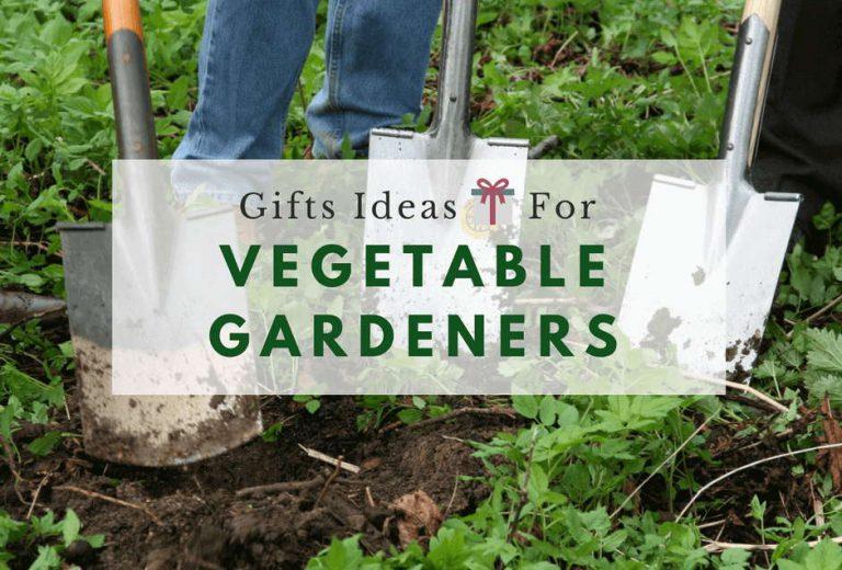 15 Best Gifts For Vegetable Gardeners